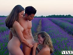 Threesomes in the lavender field and next to the swimming po...
